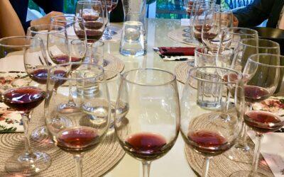 Pinot Noir maailman eri puolilta